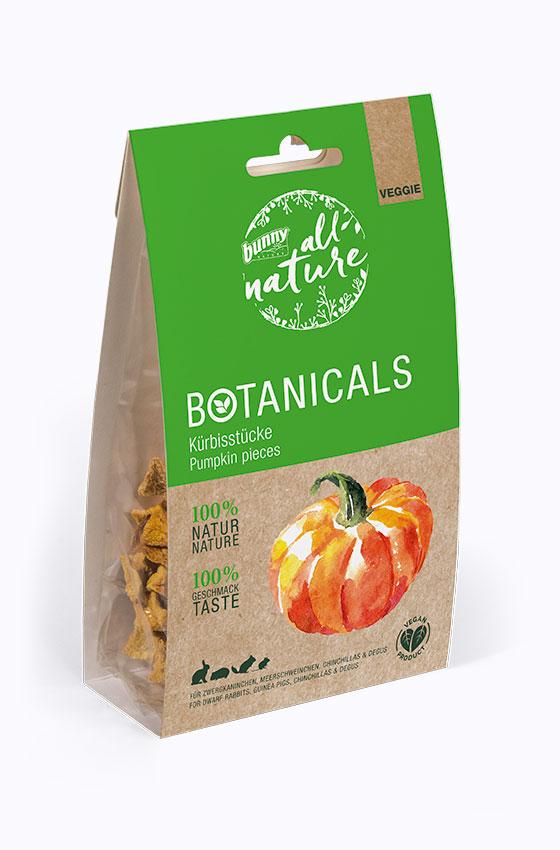 BOTANICALS Snacks - Kürbisstücke Packung