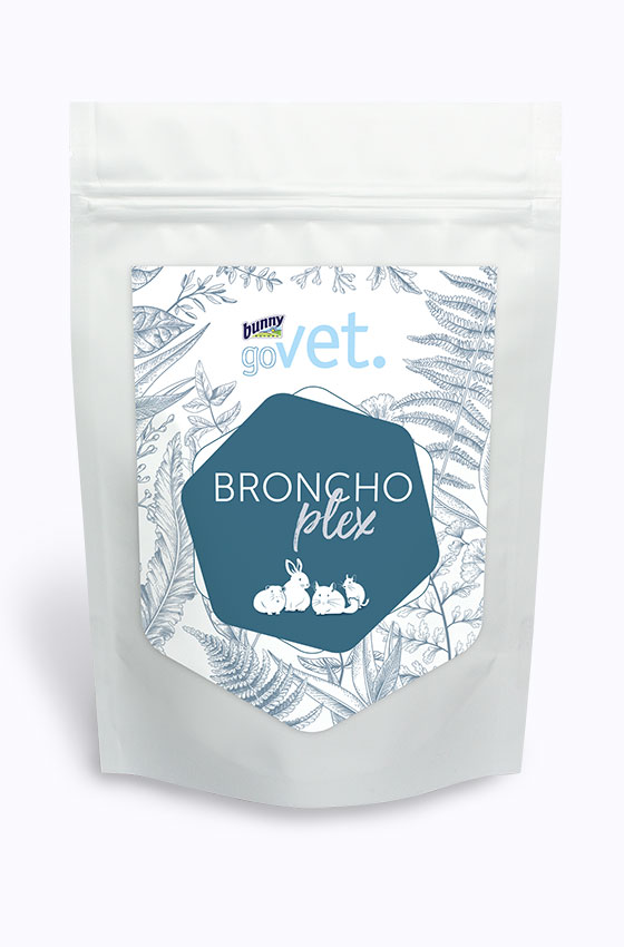 goVet Bronchoplex Packung